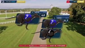 RACINGDOGS | Visualizzazione dei risultati
