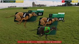 Racing Dogs+ | Affichage des résultats
