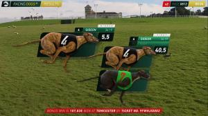 RACINGDOGS+ | Results display